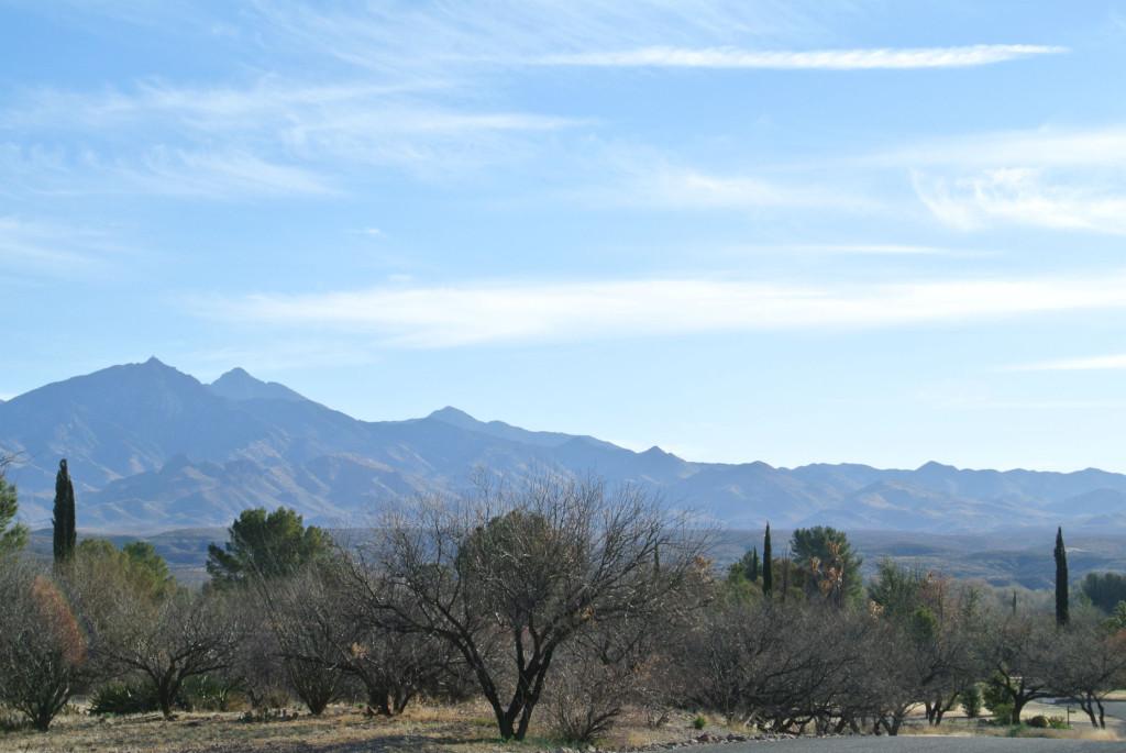 Tucson Photo